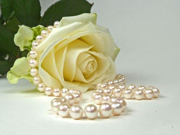 Pearls Auricula